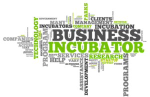 business incubators in south africa