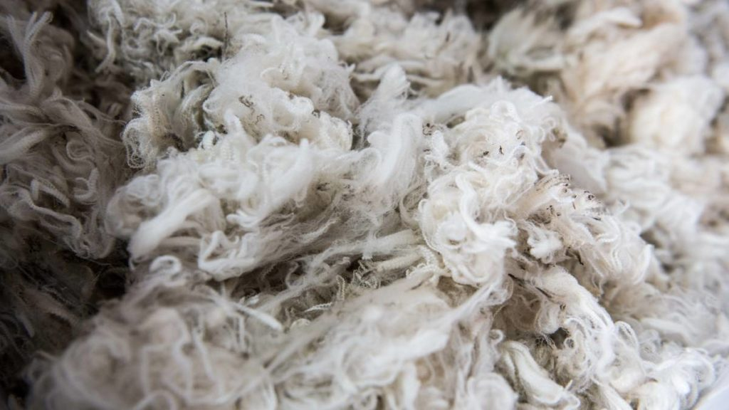 Prices of Wool in South Africa